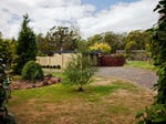 128 Los Angelos Road, Swan Bay, Tas 7252