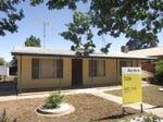 141 Condobolin Road, Parkes, NSW 2870