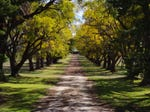 52 'Alpha' Roselea Road, Inverell, NSW 2360