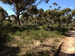 Lot 115 Redgum Rd, Coulta, SA 5607