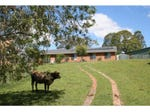 1571 Rollands Plains Road, Rollands Plains, NSW 2441