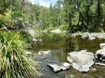 9004 Armidale Road, Dorrigo, NSW 2453