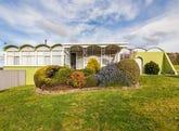 20 Longwood Avenue, Newstead, Tas 7250