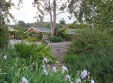 12 Chalk Hill Road, McLaren Vale, SA 5171