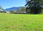 1882 Waterfall Way, Bellingen, NSW 2454