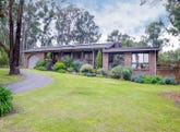 18 Williams Road, Don Valley, Vic 3139