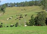 586 Wallaringa Road, Dungog, NSW 2420