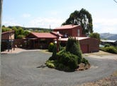 228 North Prospect Road, Ridgley, Tas 7321