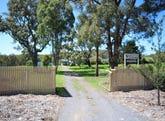 247 Mount Mackenzie Road, Tenterfield, NSW 2372