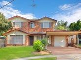 17 Gill Place, Schofields, NSW 2762