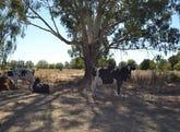 242 MOYHU MEADOW CREEK ROAD, Meadow Creek, Vic 3678