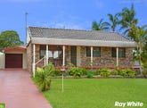 37 The Express Way, Albion Park, NSW 2527