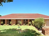 78 Carruthers Drive, Modbury North, SA 5092