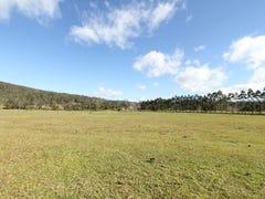 Lot 2, 1485 Yarramalong Road, Yarramalong, NSW 2259