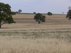 'Fairview' Bangaroo Rd, Billimari, Cowra, NSW 2794