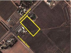 Lot 1 Etiwanda Avenue, Mildura, Vic 3500