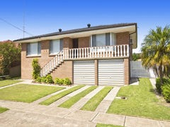 111 Princeton Avenue, Adamstown Heights, NSW 2289