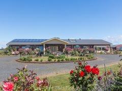 189 Preolenna Road, Flowerdale, Tas 7325