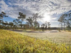 Pub Lane, New Beith, Qld 4124
