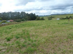 1 Camena Road, Natone, Tas 7321