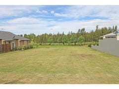 34 Peppertree Drive, The Vintage, Rothbury, NSW 2320