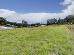 Kermandie River Road, Geeveston, Tas 7116