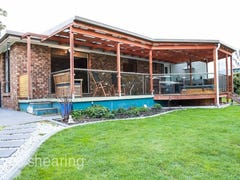 206 Greens Beach Road, Beaconsfield, Tas 7270