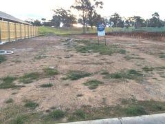 31 (Lot 4025) The Hermitage Way, Gledswood Hills, NSW 2557
