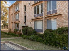 4/141 Carruthers Street, Curtin, ACT 2605
