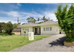 9 Carunta Street, Wattle Park, SA 5066