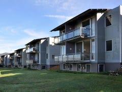 Villa 55 Elysia Thompsons Rd, Pokolbin, NSW 2320