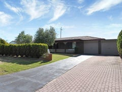53 Dotterel Way, Yangebup, WA 6164