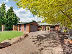 18 Baraga Grove, Modbury Heights, SA 5092