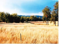 Lot 7, Grooble Rd, Warialda, NSW 2402