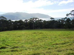 Lot 7 Blowhole Road, Eaglehawk Neck, Tas 7179