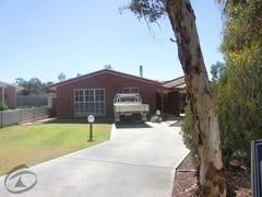 17 Cliffside Court, Alice Springs, NT 0870