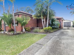 35 Menzies Circuit, St Clair, NSW 2759