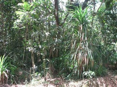Lot 13 Forest Creek Road  FOREST CREEK, Daintree, Qld 4873