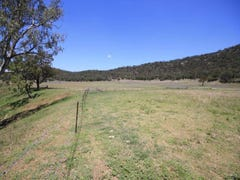 Lot 49 Giants Creek Road, Sandy Hollow, NSW 2333