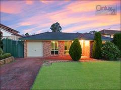 8 Silkwood Grove, Quakers Hill, NSW 2763