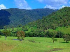 242 Grigor Road, Maleny, Qld 4552