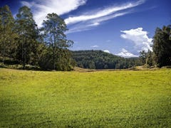 Lot 20,73 & 1, Yarramalong Road, Wyong Creek, NSW 2259