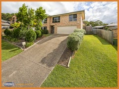 31 Bluetail Crescent, Upper Coomera, Qld 4209