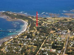 24 The Esplanade, Flinders, Vic 3929
