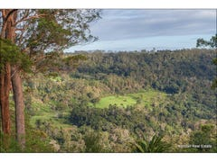 48 The Shelf Road, Tamborine Mountain, Qld 4272