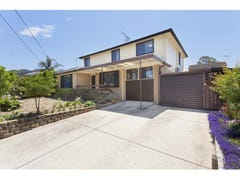 423 Marion Street, Georges Hall, NSW 2198