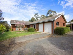 504 Hendersons Lane, Gravelly Beach, Tas 7276