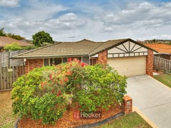 47 Shelduck Place, Calamvale, Qld 4116