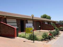 Unit 2 / 14 Sturt Street, Barmera, SA 5345