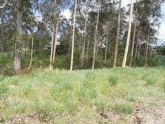 Lot 2 Snow Court, Tamaree, Qld 4570